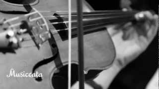 Rolling in the Deep - Adele - Musiccata Coral e Orquestra