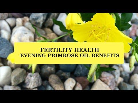 fertility-health-evening-primrose-oil-benefits