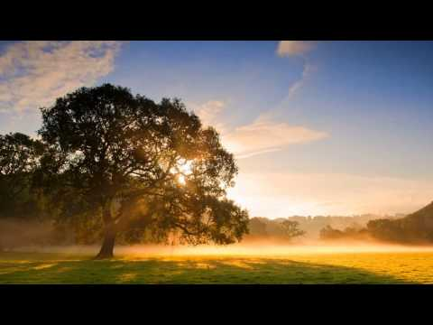 Relaxed all Day ~ Wellness Music ♫ Late Morning