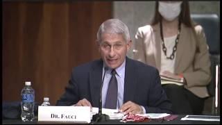 LIVE: Dr. Fauci testifies at Senate panel hearing on COVID-19