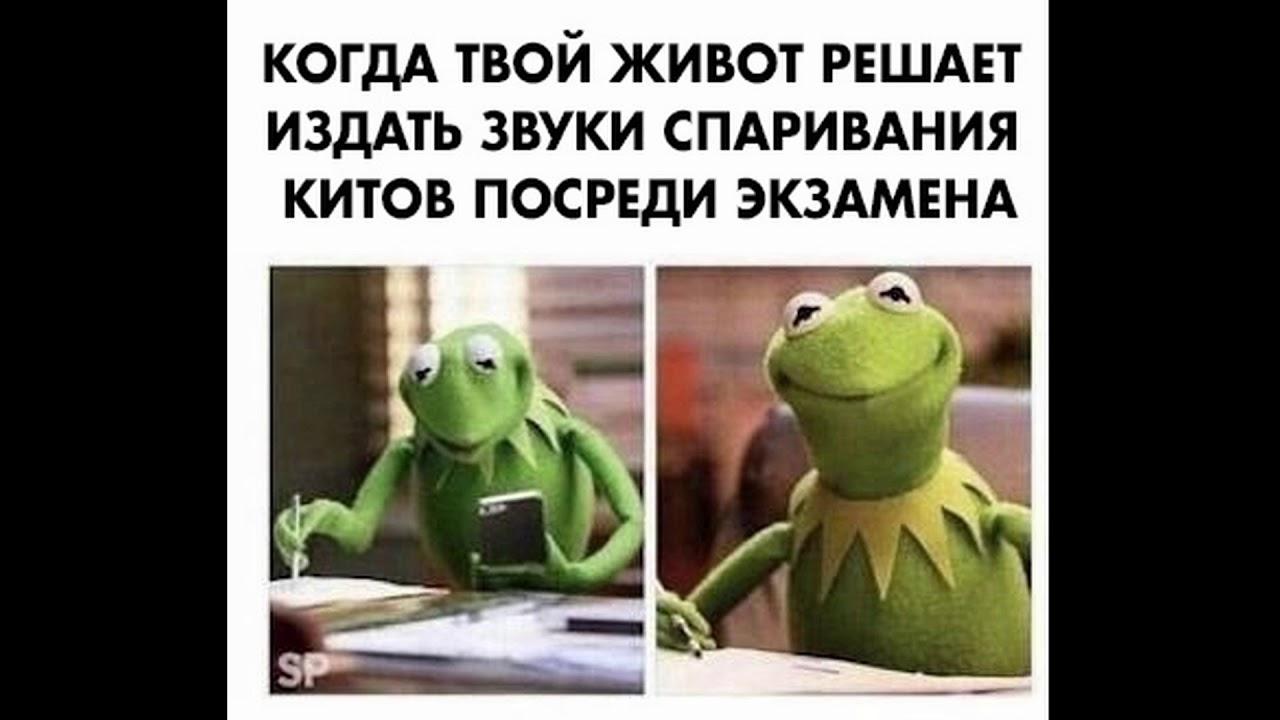 САМЫЙ СМЕШНОЙ МЕМ В МИРЕ №17 - YouTube