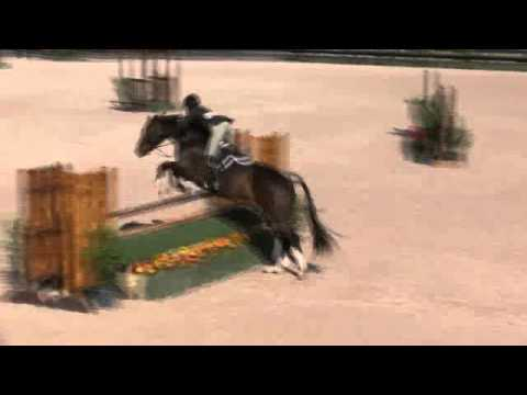 Video of CASTLEGUARD ridden by LISA FOSTER from Net!