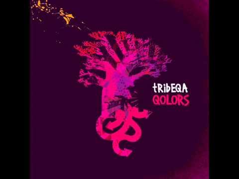 Tribeqa - Rose