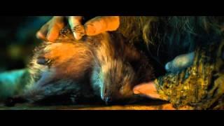 Хоббит: Нежданное путешествие (2012) трейлер
