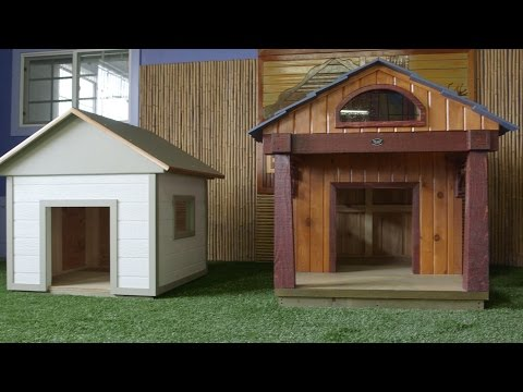 Introduction to Bow Wow Dog Houses
