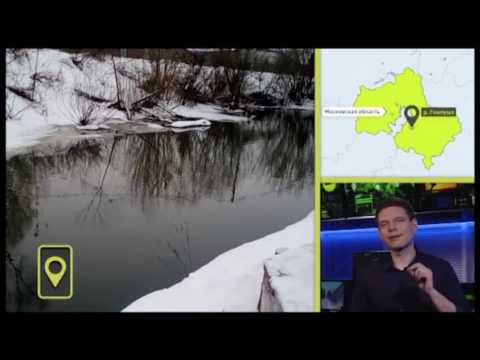 Река Гнилуша в Подмосковье позеленела, хотя до цветения водорослей ещё далеко