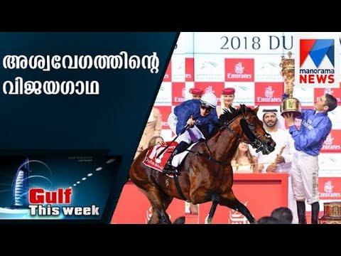 അശ്വവേഗത്തിൻറെ വിജയഗാഥ  Gulf This Week | Dubai World Cup 2018 | Sharjah Caligrafi