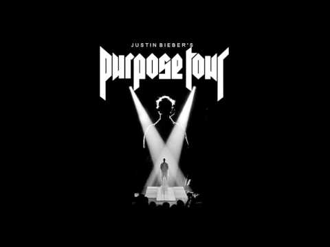 What Do You Mean? version purpose tour