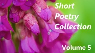 Short Poetry Collection Volume 5 - FULL Audio Book - Best Poems, Poetry, and Poets