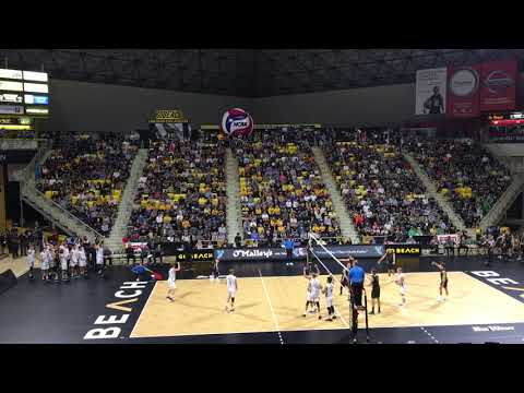 Long Beach vs Hawaii Volleyball Highlights 2019