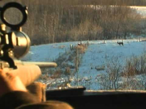 Wayne Pearson Hunts Trophy Whitetail Deer in Alberta Canada on Ultimate Outdoor Aventures