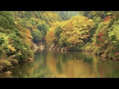 Welcome to Shikoku Island, Japan
