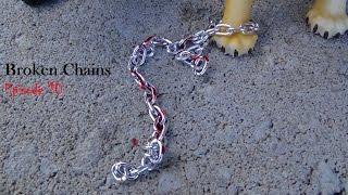 Broken Chains Episode 10: Don't Scream (Schleich Cat Movie)