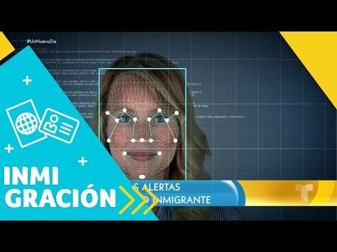 Rico - ICE Tiene Acceso A Las Licencias!