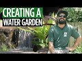Creating a water garden