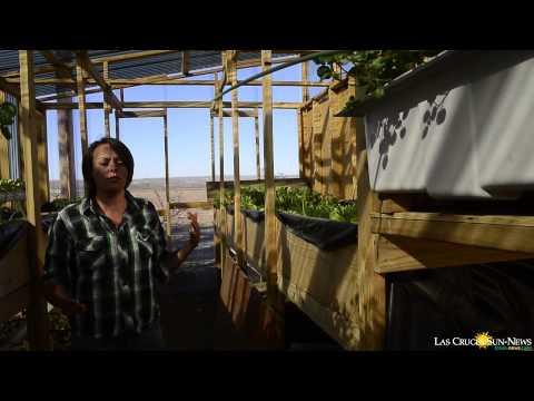 MVM Organic Farm
