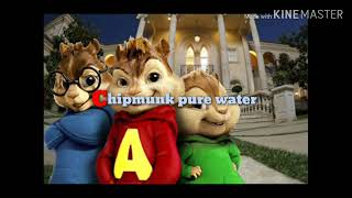 {+{)****Chipmunk****(}+}= (pure water)