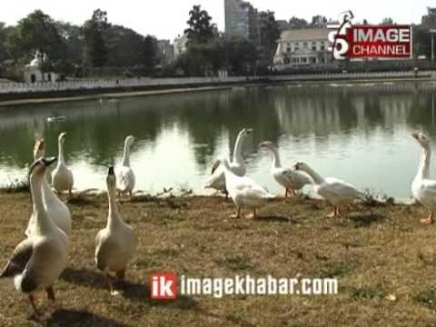 Rani Pokhari Naya Swaroop ma Bandai - Report