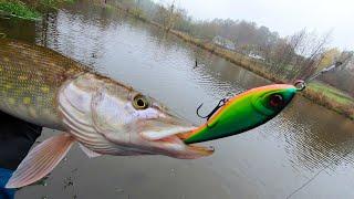 Нашел джерк который просто выкашивает щуку Береговая рыбалка на джерки это кайф
