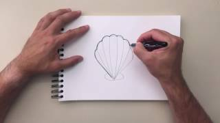 How to Draw - Clam Shell