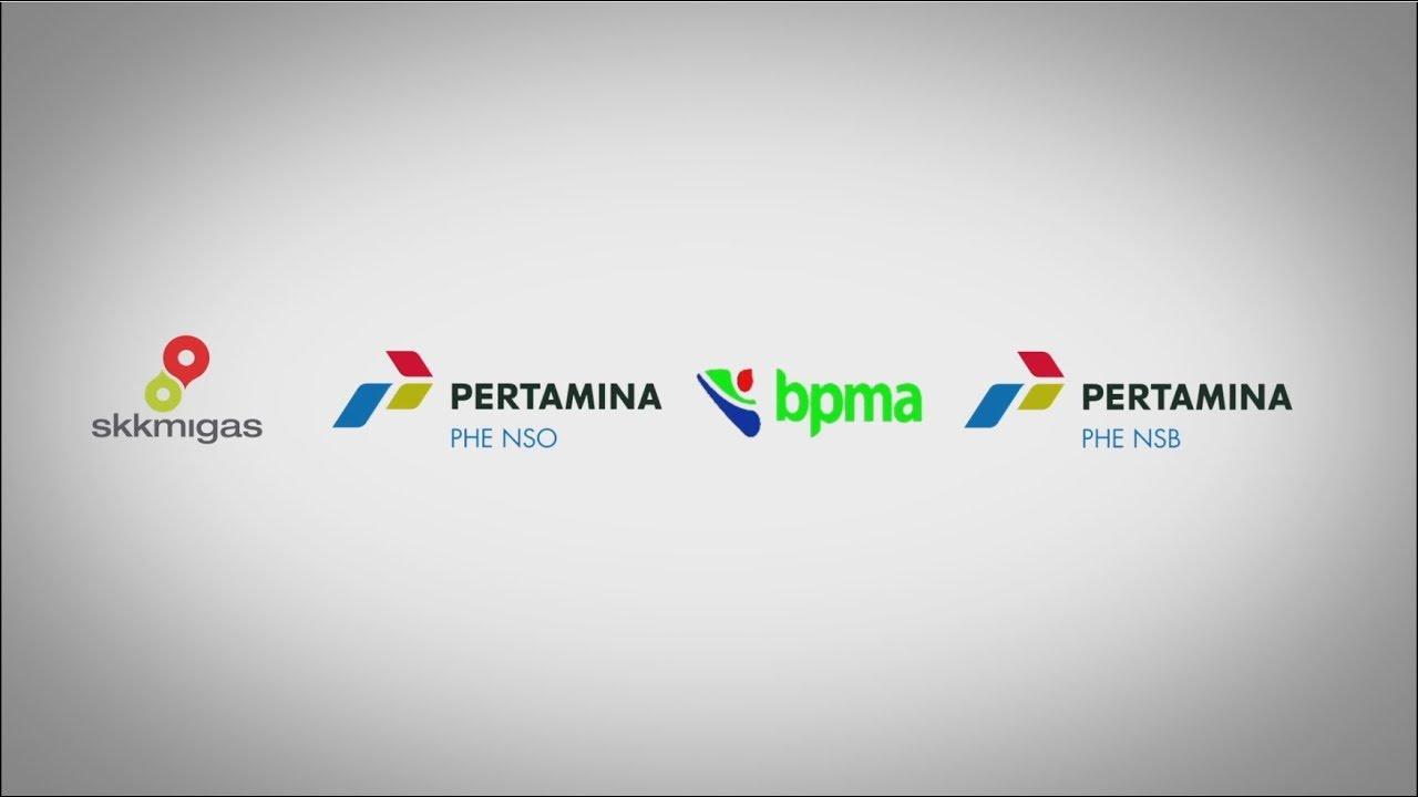 PERTAMINA HULU ENERGI NSB NSO - COMPANY PROFILE