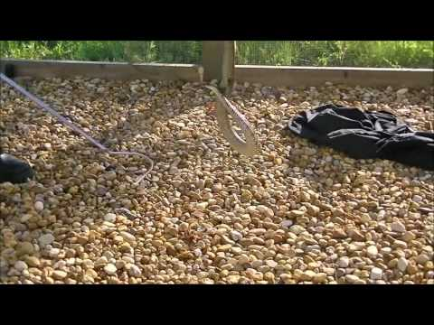 Botanic Snake Proof Fence Youtube