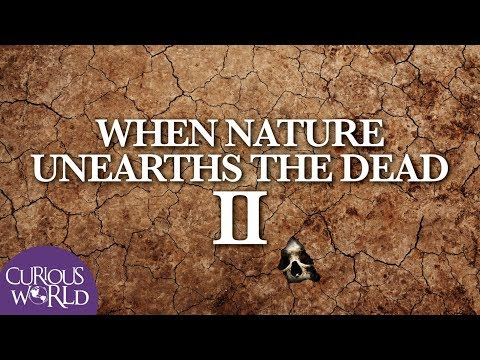When Nature Unearths the Dead II
