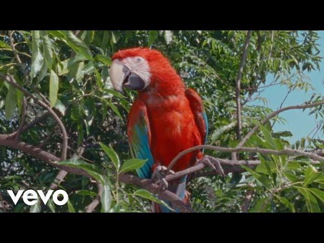 Calvin Harris - Cash Out (Official Audio) ft. ScHoolboy Q, PARTYNEXTDOOR, D.R.A.M.