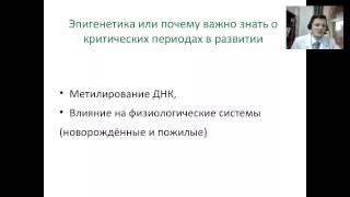 Лекция Ильи Мартынова