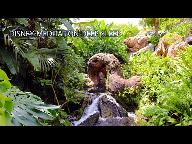 Disney Meditation Soothing River Waterfall Animal Kingdom 10 Hour Deep Sleep Calm Relaxing Dreams