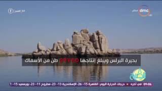 8 الصبح - تقرير يرصد عدد البحيرات الموجودة فى مصر وحجم إنتاجها من الأسماك