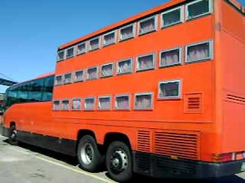 rotel tours rolling hotel eccentric mercedes benz bus youtube. Black Bedroom Furniture Sets. Home Design Ideas
