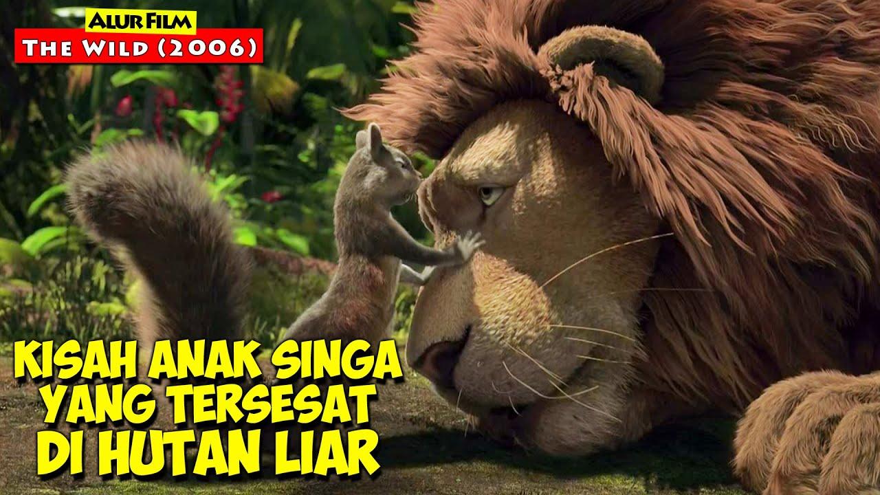 Seekor Singa Yang Berjuang Mencari Anaknya Yang Tersesat Di Hutan Liar | Alur Cerita Film THE WILD