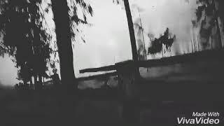 Ёжик в тумане Смотреть Всем Я Ржал 3 Часа )))))))