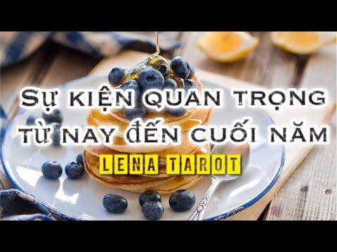 Lena Tarot   Chọn 1 tụ bài   SỰ KIỆN QUAN TRỌNG TỪ NAY ĐẾN CUỐI NĂM BẠN CẦN BIẾT
