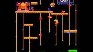 MAME Donkey Kong Junior World Record Corey Chambers 1,323,200