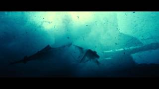 Rust and Bone - Trailer