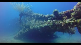 RMS Rhone Wreck Dive, British Virgin Islands