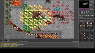 Tibia Mortal Kombat Quest- Bully Malefico- Elfo Druid