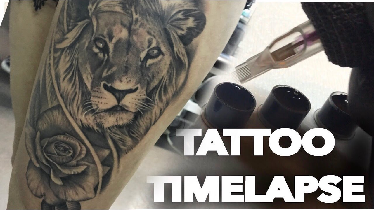 9425651bda57d TATTOO TIME LAPSE | LION AND REALISTIC ROSE PORTRAIT | CHRISSY LEE ...