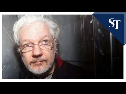 Julian Assange offered pardon by Trump, says lawyer
