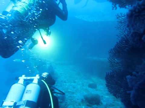 Wreck dive on 'Le Grec' in France