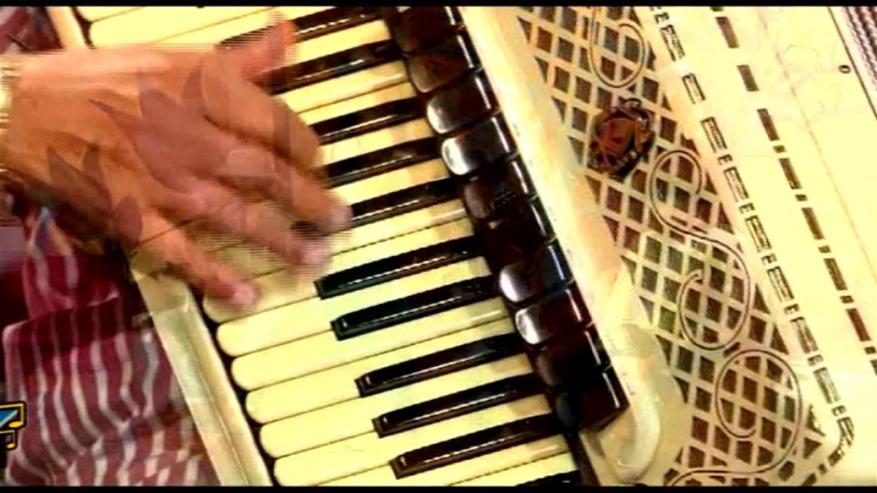 GRATIS BAIXAR MUSICA XOTE ECOLOGICO