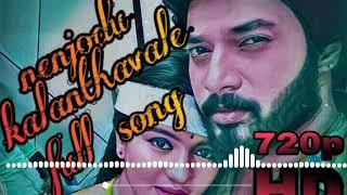 Nenjodu kalanthavale | Sembaruthi serial bgm