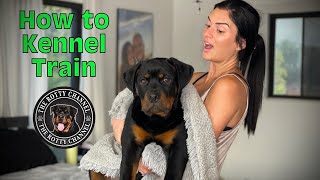 How to Crate train a Rottweiler puppy