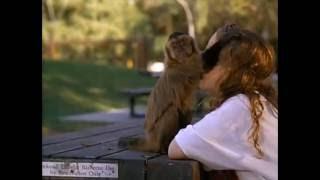 Monkey Trouble Trailer
