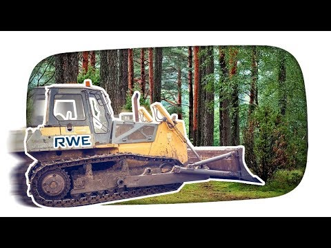 Hambacher Forst vs. RWE – Kuchen Talks #325