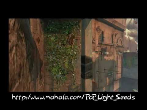 Prince of Persia Walkthrough - King