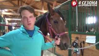 """Детский конный спорт в конно-спортивном клубе """"4 сезона"""""""