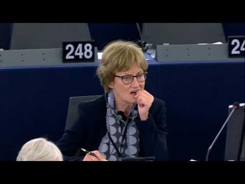 Discussione in plenaria su Diritto Civile sulla Robotica